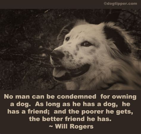 quotes about puppies quotes