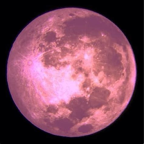 what is a pink moon the fabric of real life the full pink moon what is it