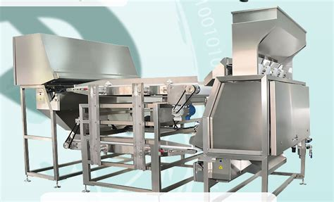 color sorter cashew color sorter mk tech co ltd cashew machine