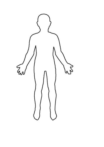 Outline Of A Human by Human Outline Sheet By Winni1 Teaching Resources Tes