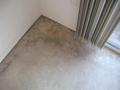 mold on bathroom floor mold on concrete under flooring