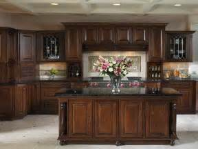 Elegant Kitchen Cabinets by Kitchen Elegant Kitchen Cabinets High End How To Decor