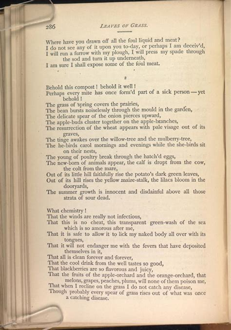 The Wound Dresser Walt Whitman by Walt Whitman The Wound Dresser Poem Analysis 28 Images