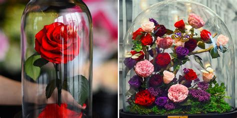 roses that last forever forever roses roses created by forever will last