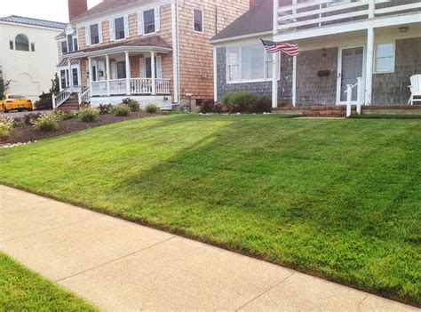 residential front yard premier lawn and landscape design