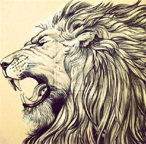 lion zendoodle drawn by justine galindo signed prints 1000 images about tattoo ideas on pinterest henna