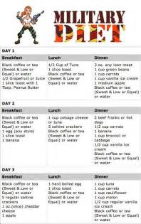 top 25 ideas about one week diet plan on diet meal plans 1 week diet and daily diet