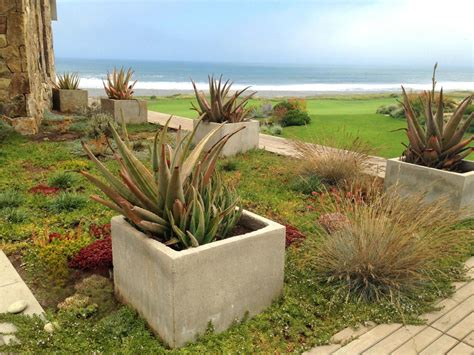 Cutting Edge Landscape Designers To Keep Your Eyes On Hgtv Cutting Edge Landscape