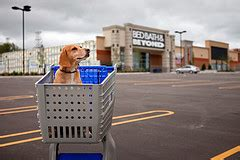 does bed bath and beyond price match how to save money at bed bath and beyond