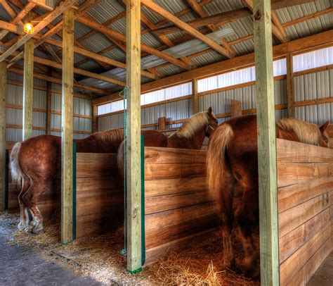 Horse Barn Tack Room Ideas Draft Horse Barn At Old Fashioned Day Jazzersten S Hdr Blog