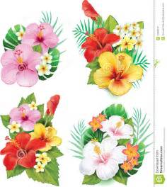 Vibrant Flowers In Watercolor - arrangement from hibiscus flowers stock photo image
