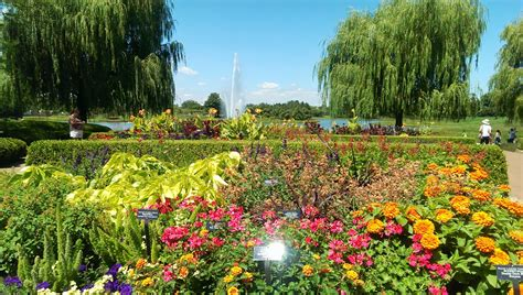 Chicago Arboretum Botanical Gardens Chicago Arboretum Botanical Gardens Panoramio Photo Of Chicago Botanic Garden Best Botanical