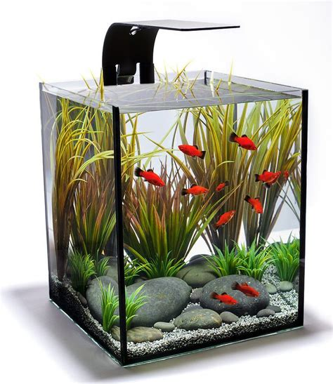 25 best ideas about aquarium design on