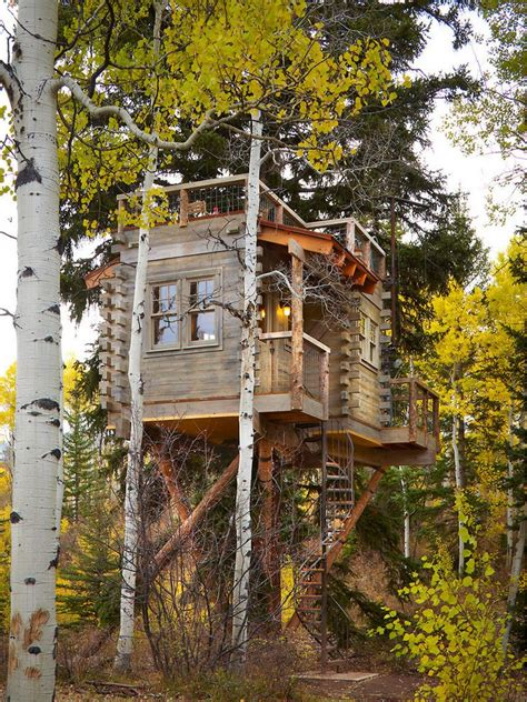 real life treehouse neatly nostalgic real life tree house is fun modern and