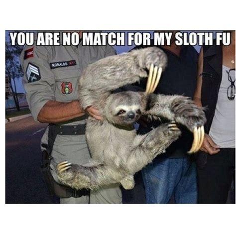 Sloth Fitness Meme - 50 best rape sloth images on pinterest