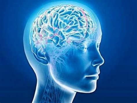 test memoria test memoria a lungo termine per diagnosi precoce alzheimer