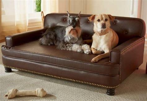 camas para perros pequeños 6 camas para perros hechas en casa 161 gratis eroski consumer