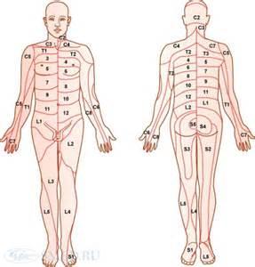 поясничного остеохондроза причины