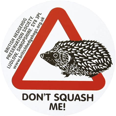 Car A Sticker by Hedgehog Car Stickers