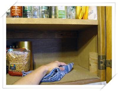 vermi sul soffitto larve sul soffitto della cucina casamia idea di immagine