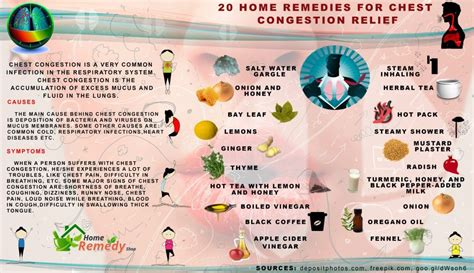 20 home remedies for chest congestion relief home