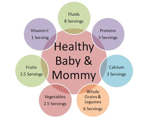 protein needs during pregnancy diet during pregnancy the pregnancy miracle