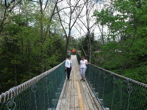 swinging bridge pigeon forge the swinging bridge picture of foxfire mountain