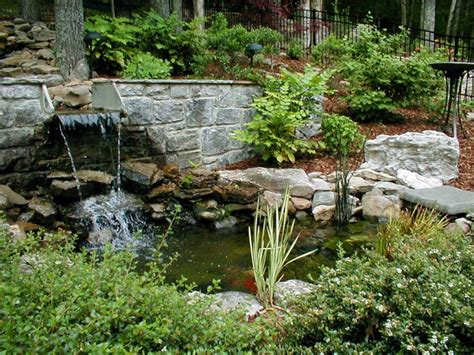 backyard pond plants garden landscaping charming backyard pond pictures which