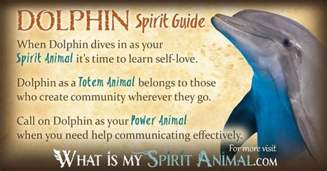 printable spirit animal quiz 590 best magical animal totems images on pinterest