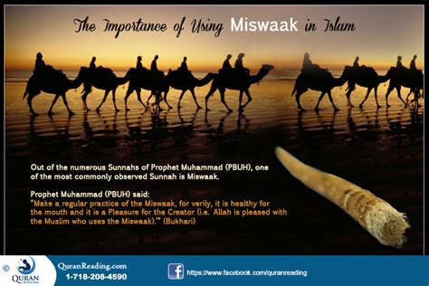 the biography of muhammad nature and authenticity pdf benefits of miswak islam fahm e deen