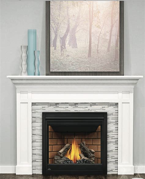 Napoleon Gas Fireplace Prices by Napoleon Ascent Gx36ntr Direct Vent Gas Fireplace By