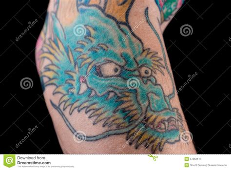 blue dragon tattoo blue on arm stock photo image 57552614