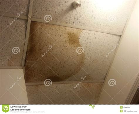 leaking ceiling stock images royalty free images water damaged ceiling tiles stock image image 50446497