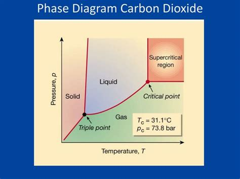 consider this phase diagram for carbon dioxide ppt warm up powerpoint presentation id 2476886
