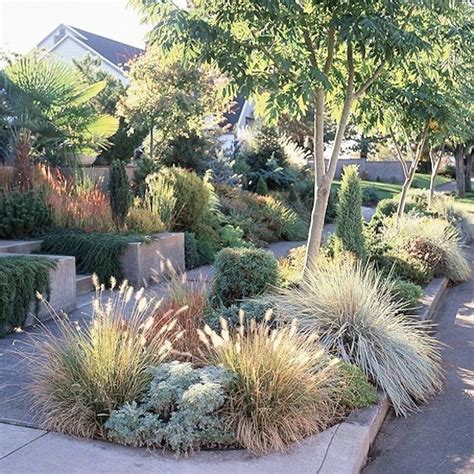 Outdoor Garden Nz 25 Best Ideas About Modern Front Yard On