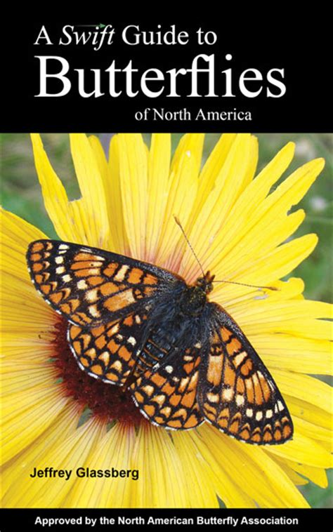 a guide to butterflies of mexico and central america books sunstreak books home page