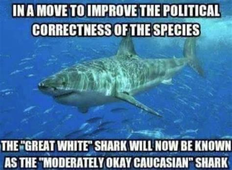 laughing at political correctness how many lightbulbs does it take to change a liberal books imageedit 2544 9166930884 politics sharks