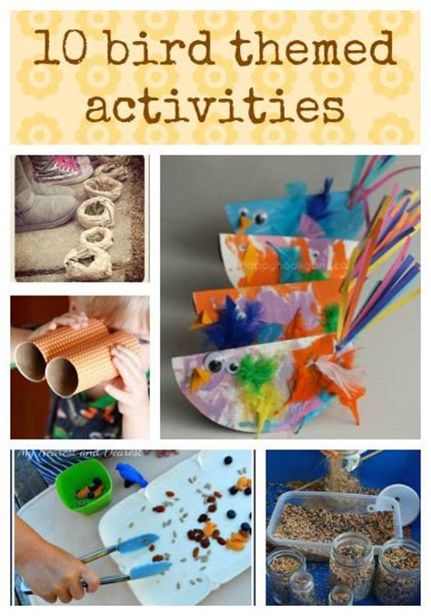 10 bird themed activities activities for kids pinterest