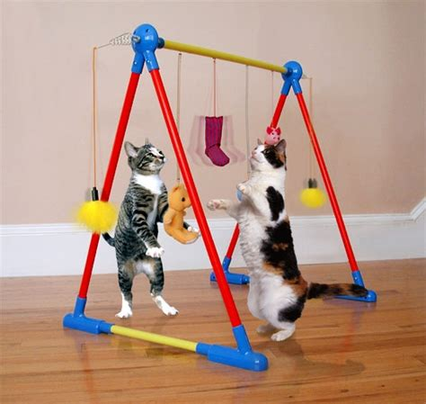 tutorial gambar kucing access a pet cat toys