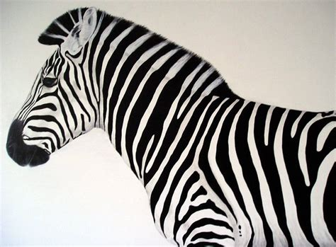 zebra paint learn how to classes painting abstract techniques