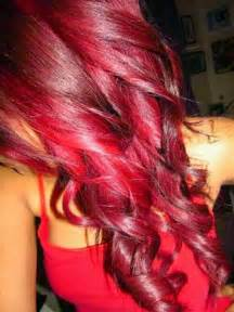 bright hair color black wine hair color dye brown hairs