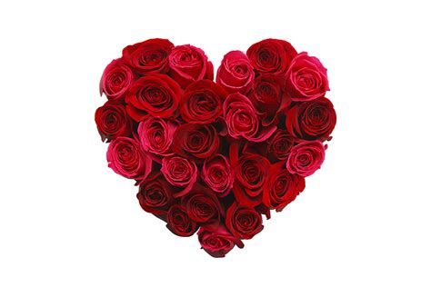 pictures of valentines day flowers the history of the humble and s day