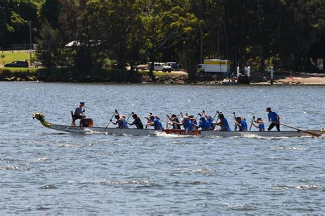 dragon boat nowra dragons in nowra narooma news