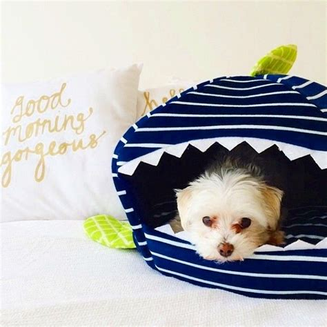 martha stewart pet beds 224 best images about dog gifts on pinterest
