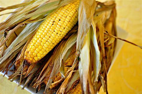smoked corn on the cob meg s everyday indulgence