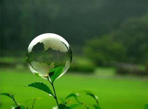 imagenes muy increibles paisajes incre 237 bles on twitter quot una de las plantas m 225 s