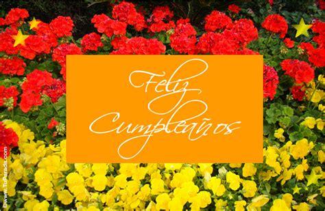 imagenes de flores interactivas feliz cumplea 241 os con flores modelos de flores enviar