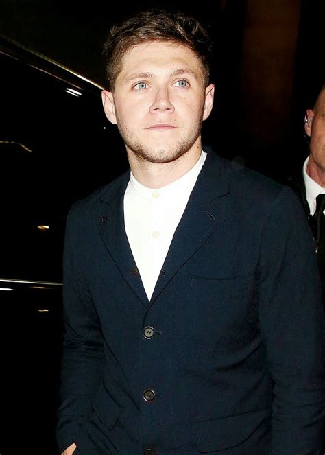 biography niall james horan 2793 best images about niall james horan on pinterest