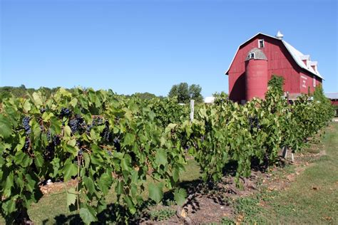 Door County Wineries by Door County Visitor Bureau Winery The Culinary Scoop