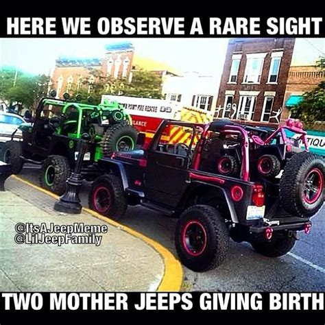 fake jeep meme 59 best jeep memes images on pinterest jeeps jeep humor